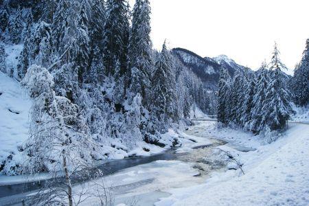 Winter10.JPG