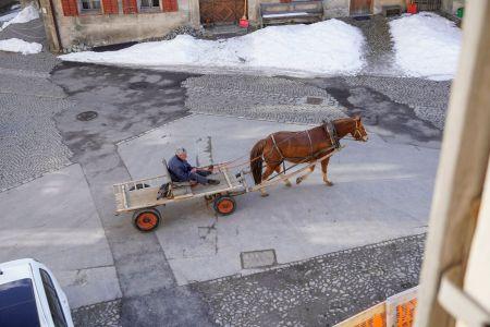 Sent_Chasa_Fent_Pferd mit Anhänger.jpg