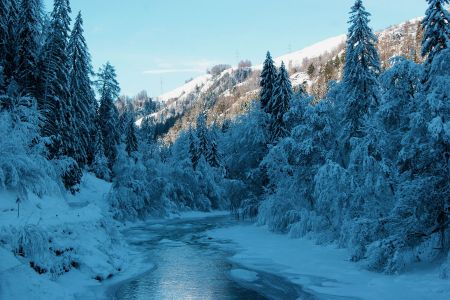 Winter09.jpg